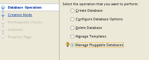 Oracle Pluggable Databases- Easy as Pie, DBCA Pie, That Is… – DBAKevlar