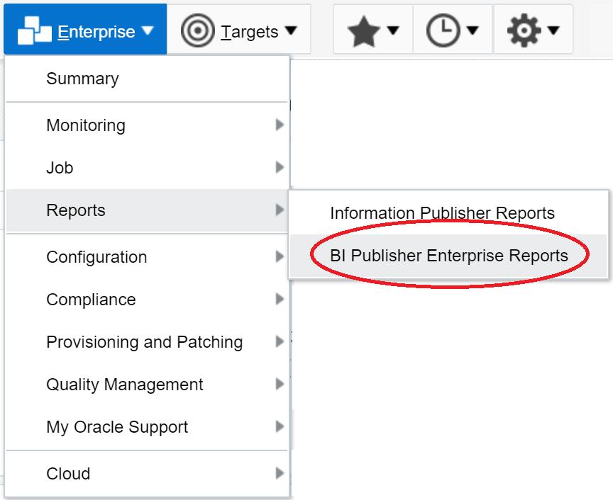 EM13c- BI Publisher Reports